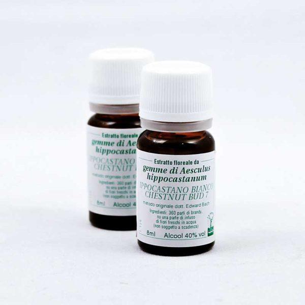 estratto floreale di ippocastano bianco chestnut bud 7
