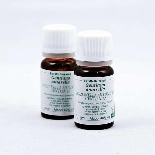 estratto floreale di genzianella autunnale gentian 12