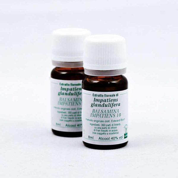estratto floreale di balsamina impatiens 18