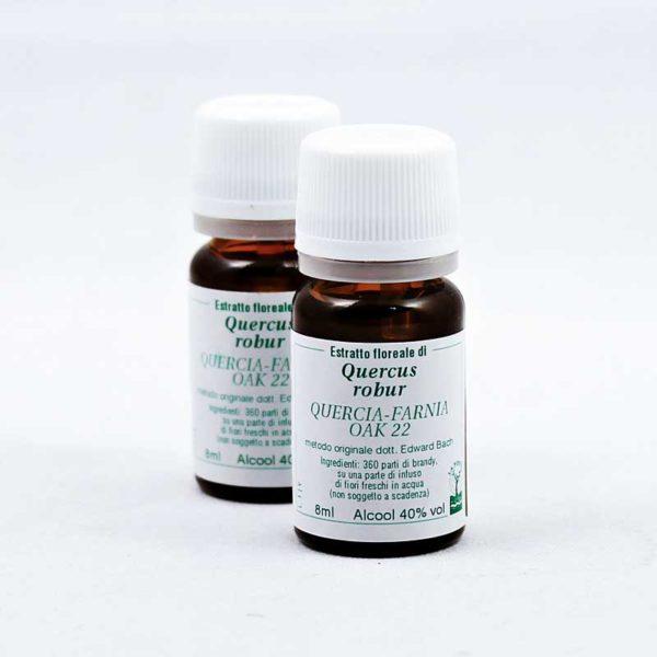 estratto floreale di quercia-farnia oak 22