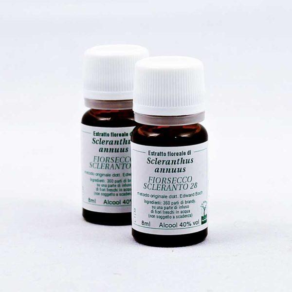 estratto floreale di fiorsecco scleranto 28