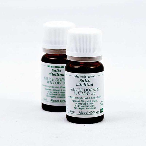 estratto floreale di salice dorato willow 38