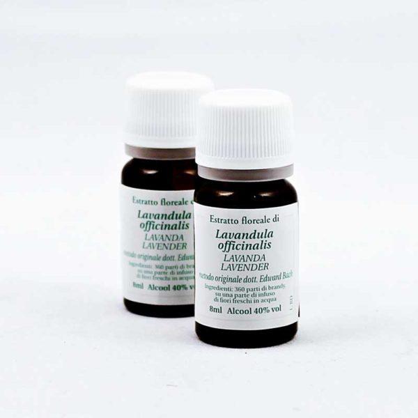 estratto floreale di lavanda lavender