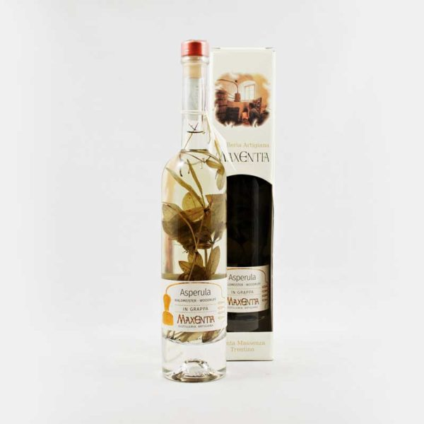 asperula liquore in grappa